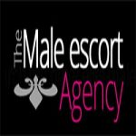 Profile picture of The Male Escort Agency